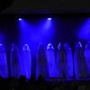 Miss Vendée 2014 à AIZENAY